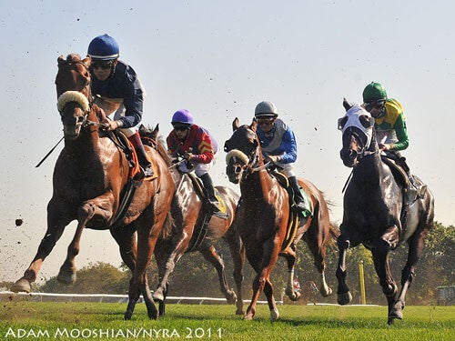 Into The Turn at Belmont Park