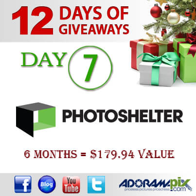 12 days of Giveawaysday7