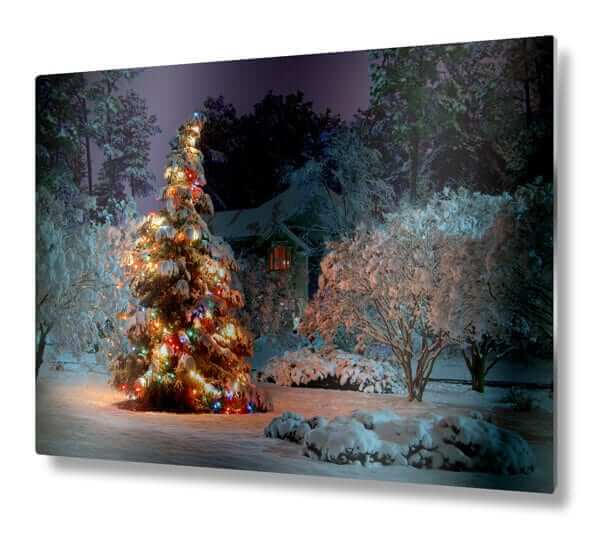 Holiday 8x10 metal print)