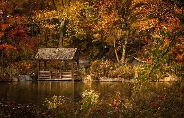 autumn-water