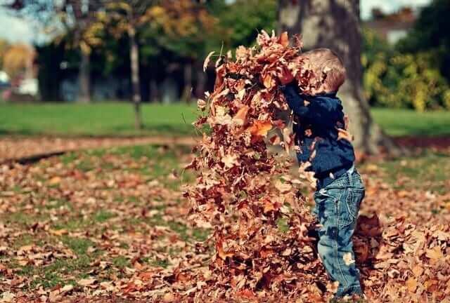 boy-in-leaves