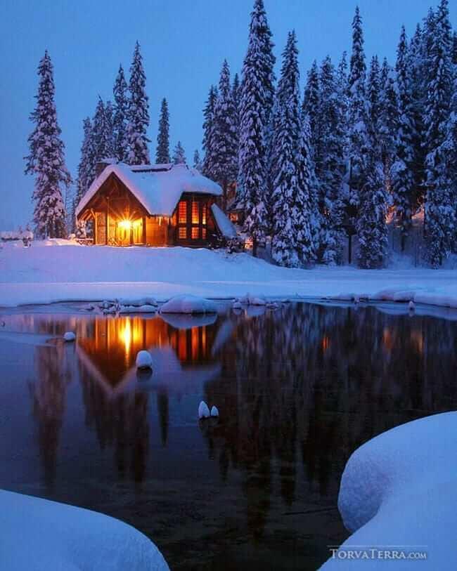 instagram torva terra cabin in the woods