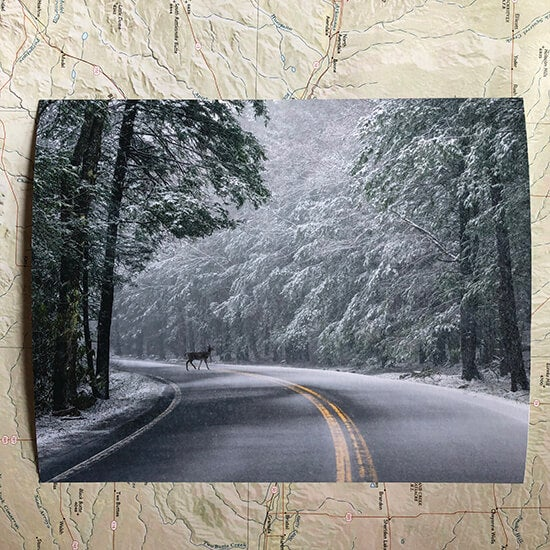 fine art print produced by Printique